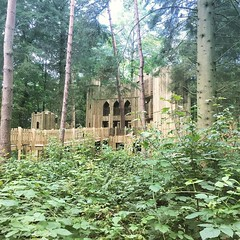 The hidden castle at Lowther, a great day out for kids, Luke loved it as well as exploring the forest and going on the tree swings. I'd recommend getting there earlier when it's a little quieter
