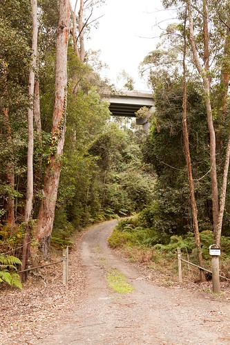 Myrtle Gully Rd Former Alignment