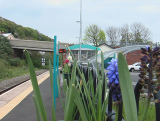 Flowers decorating the platform at Fishguard & Goodwick