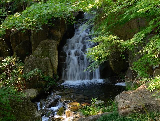 Tokugawa Garden Waterfall