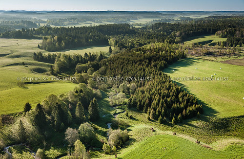 3 natur sverige swe västragötaland flygfoto ånnerud granplantering högsäter rännelanda