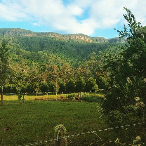 Idyllic  In the Kangaroo Valley... #kangaroovalley #stravaproof #morningride #berrymountaincycles #igerssouthcoastnsw