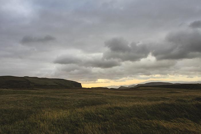 Iceland_Spiegeleule_August2014 258