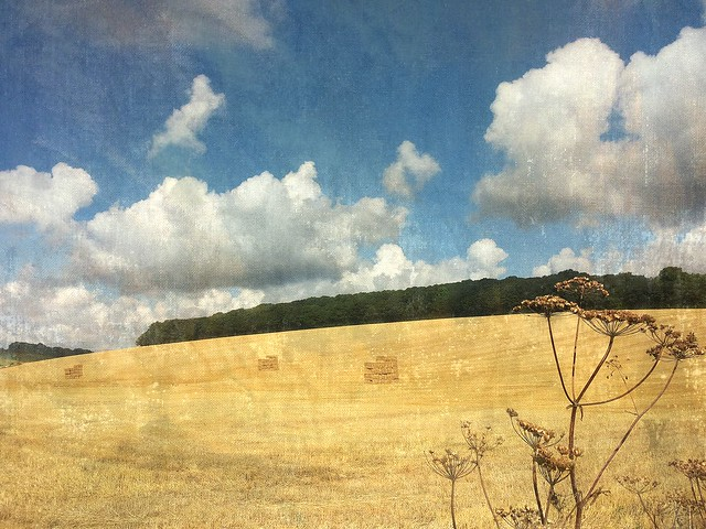 - - - - -an  ode  to  the  English  countryside  4/4 - - - - Fields of Gold