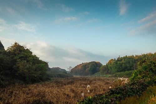 japan sunrise landscape chiba tomisato fujix100s