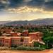 Small photo of Sana'a University