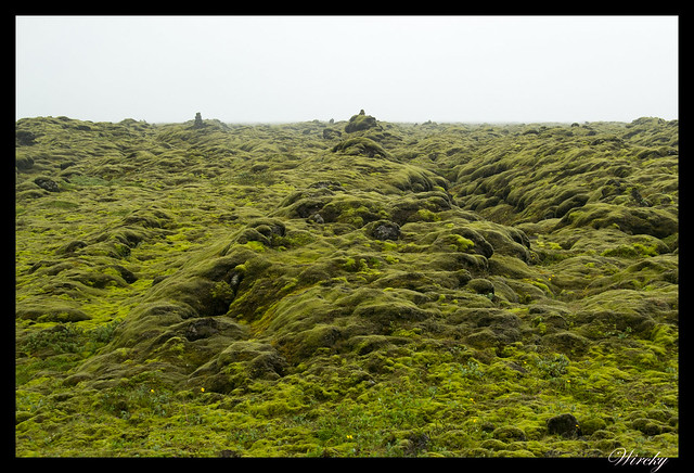 Islandia Vík Eldhraun Skaftafellsjökull Svartifoss Jökulsárlon - Campos de lava Eldhraun