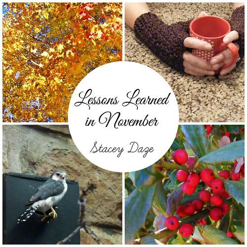 November wil2