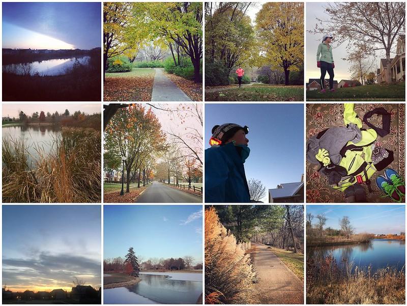 November Runs - Contrasts