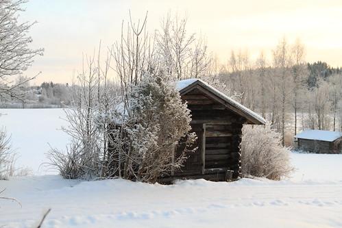 trees winter house suomi finland frost december farm sunny talo talvi winterwonderland winterlandscape laukaa puut maatila joulukuu aurinkoinen kuura valkola talvimaisema canon7d anttospohja talvenihmemaa juhanianttonen ef1635l28iiusm