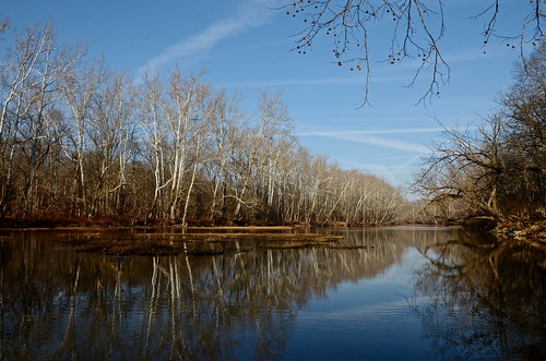 county blue trees winter ohio sky brown white cold reflection nature river bare delaware olentangy