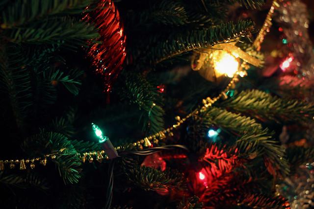 Christmas Tree Winter 2014