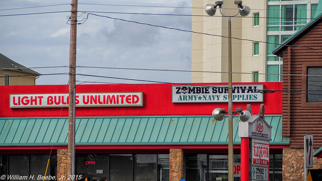 best stores for the zombie apocolypse