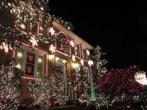 the christmas lights of dyker heights