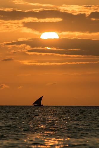 africa tanzania westafrica pemba pembaisland