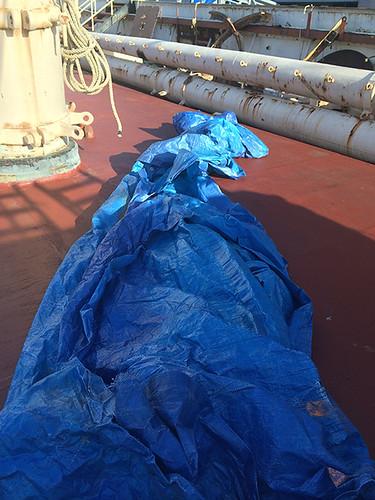 random blue tarp