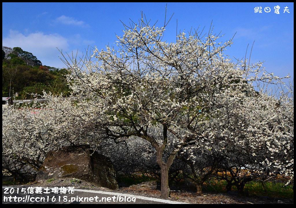 2015信義土場梅花DSC_9353