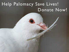 Yuzu_Palomacy_Donate