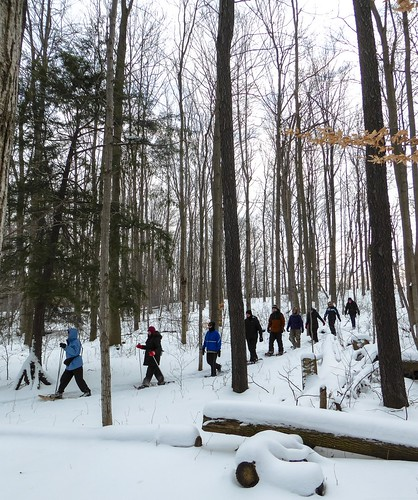 Winter Hike 2015-1010336.jpg