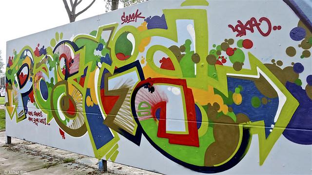 Delft Graffiti : SENK