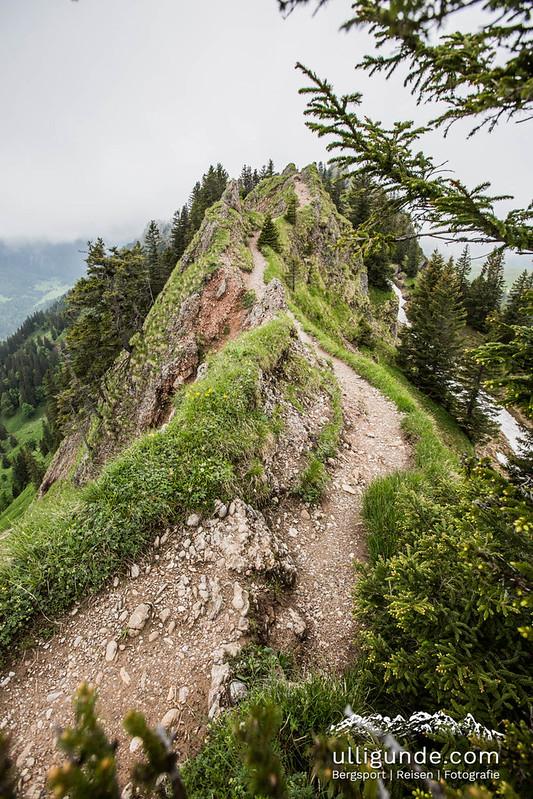 Trailrunning-Traum an der Nagelfluhkette.