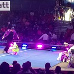 UniverSoul Circus @ Roy Wilkins Park