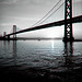 Mornings on the Bay by Thomas Hawk