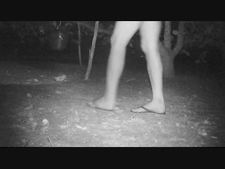 Wolf Cliffs Camp trail cam video how to attract a maned wolf