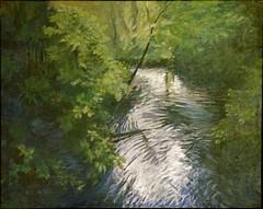 stream in a wood: douglas rutzen