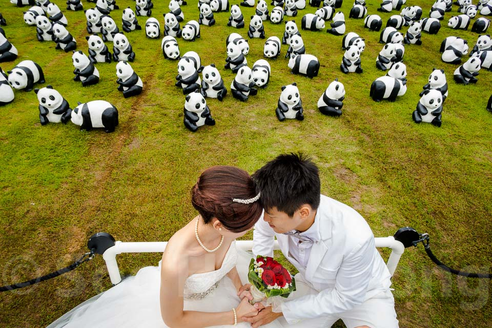 1,600 pandas invades @ Putrajaya, Malaysia