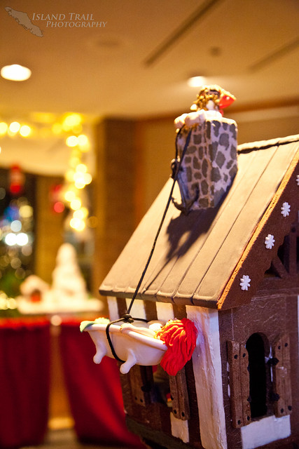 Gingerbread Display - 2014.12.19-9470