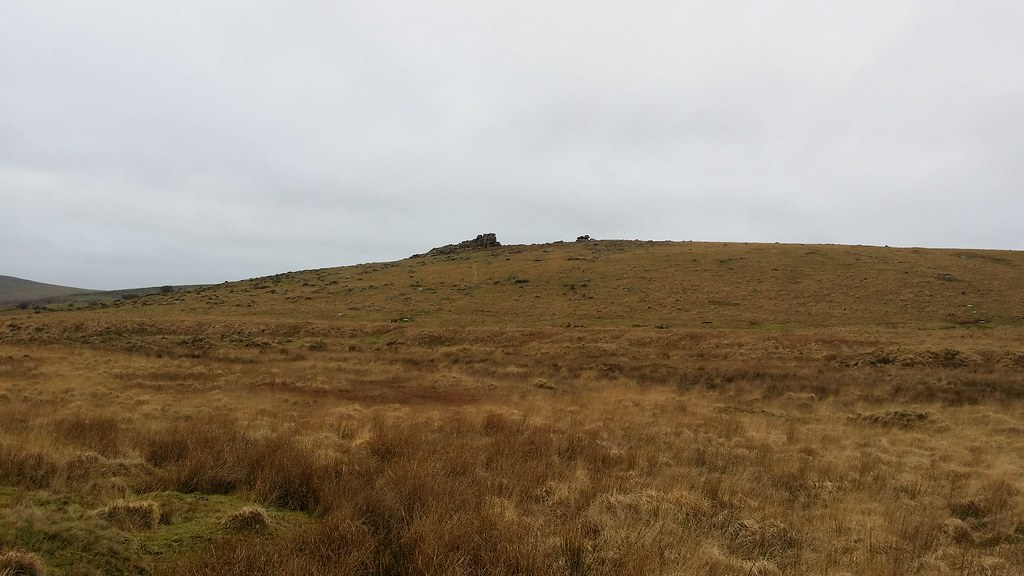 Black Tor (Walkhampton) #dartmoor #sh