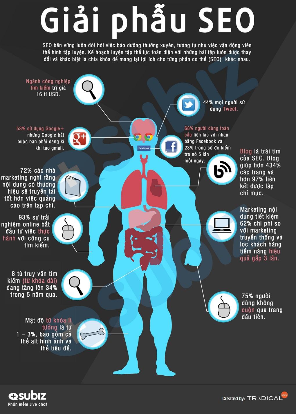 Infographic - Tổng Quan Về SEO