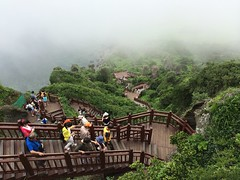 Jeju Island Trip