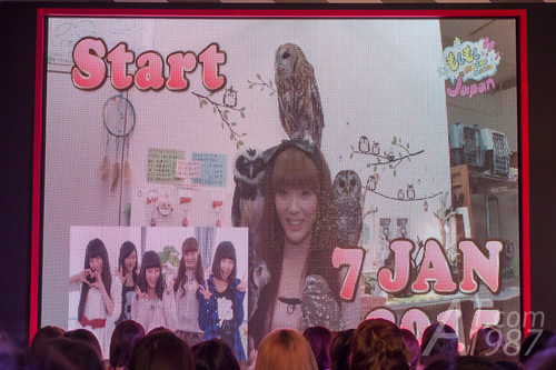 J Series Festival 2014