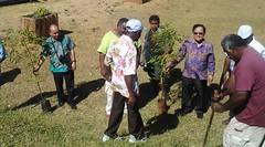 Tree planting 2014-11-30 14.51.57