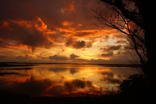 """sunset sea england cloud water clouds sussex britain sony great naturereserve pagham """"united """"sigma 1020"""" """"wide angle"""" kingdom"""" turner"""" """"barry alpha65"""