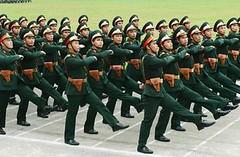 quandoi_vietnam02_batnhao