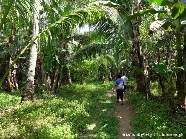 Hiking to Dalipuga Falls in Iligan City, Philippines