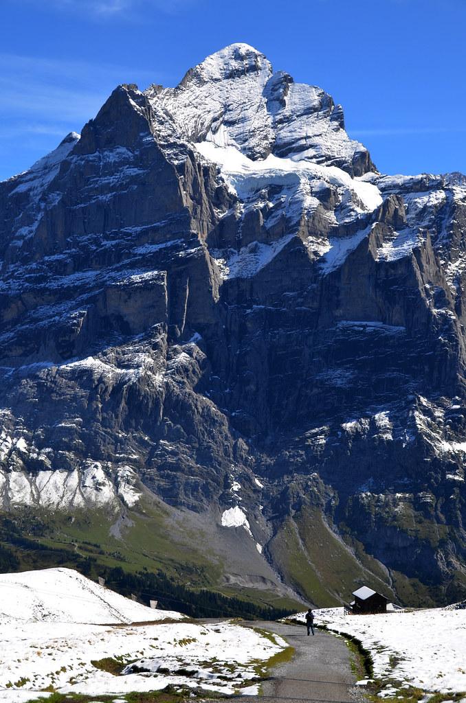 Sintiéndonos hormiguitas frente a las enormes montañas suizas