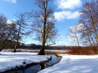 Wintersonne im Wrangelsburg / Weisse See