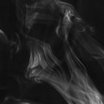 [301] Steam