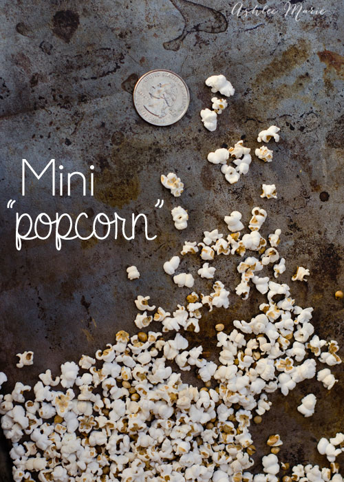you can pop sorghum to create this adorable mini popcorn, that tastes just like the real thing! Like barbie popcorn