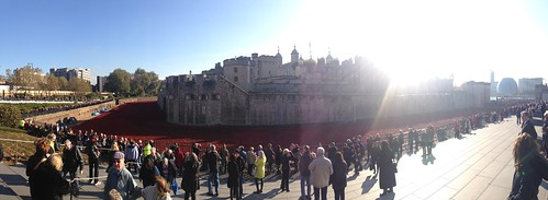 Tower of Poppies