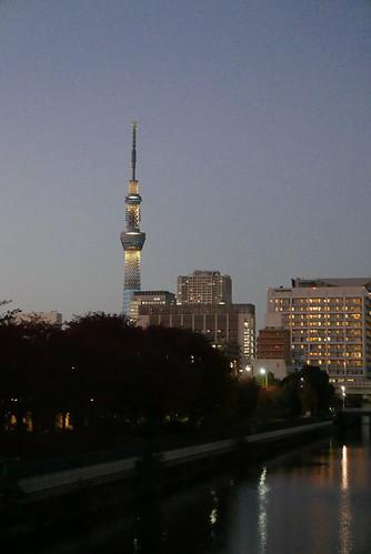 本村橋から眺める夕刻スカイツリー