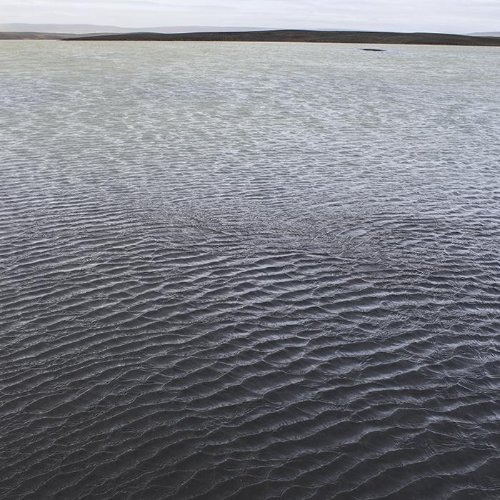 Iceland_Spiegeleule_August2014 163
