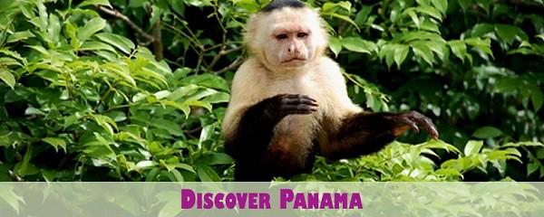 Discover Panama