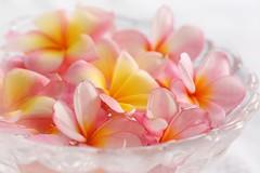 К чему снится зефир белый и розовый
