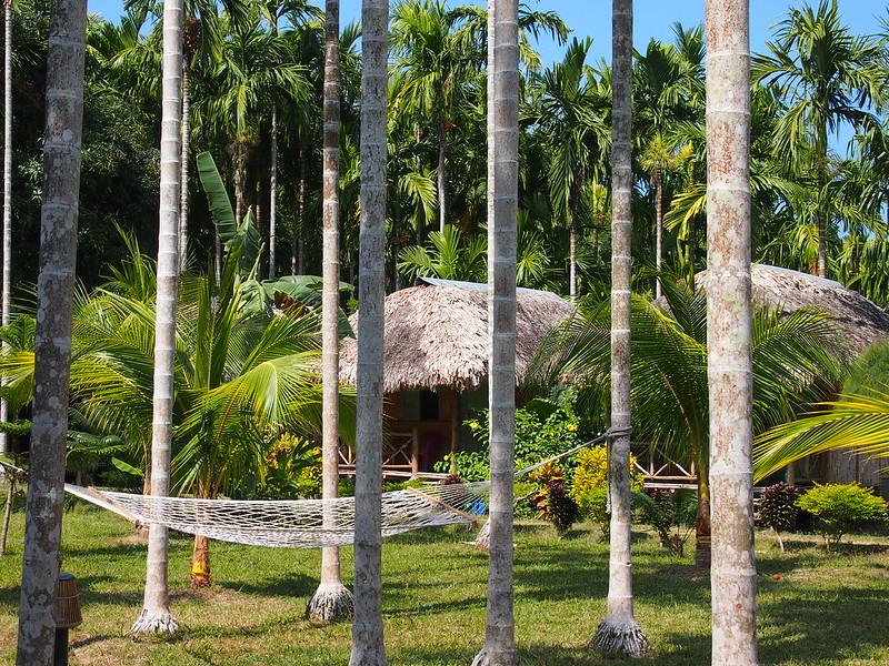 India Andaman Islands インド アンダマン諸島 Jan 30 - Feb 22 2014