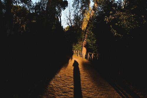 park trees light sunset italy rome dark reflex nikon shadows hill grain zodiac dslr kodakportra160nc fav10 latium fav25 montemario panoramicpoint vsco d5200 afsdxvrzoomnikkor18105mmf3556ged nikond5200 vscofilm event2015zodiac